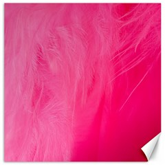Very Pink Feather Canvas 16  X 16   by Simbadda