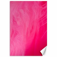 Very Pink Feather Canvas 20  X 30   by Simbadda