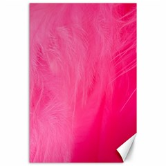 Very Pink Feather Canvas 24  X 36  by Simbadda