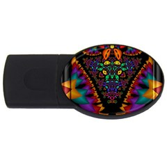 Symmetric Fractal Image In 3d Glass Frame Usb Flash Drive Oval (2 Gb) by Simbadda