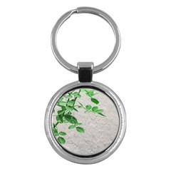 Plants Over Wall Key Chains (round)  by dflcprints