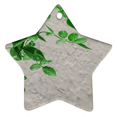 Plants Over Wall Star Ornament (two Sides) by dflcprints