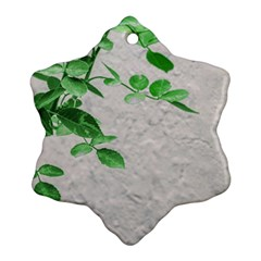 Plants Over Wall Ornament (snowflake) by dflcprints
