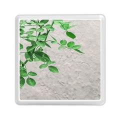 Plants Over Wall Memory Card Reader (square)  by dflcprints