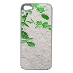 Plants Over Wall Apple Iphone 5 Case (silver) by dflcprints