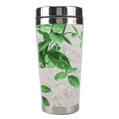 Plants Over Wall Stainless Steel Travel Tumblers by dflcprints