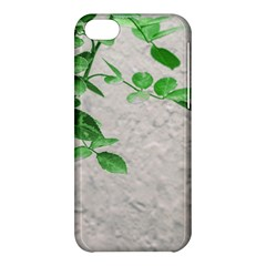 Plants Over Wall Apple Iphone 5c Hardshell Case by dflcprints