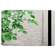 Plants Over Wall Ipad Air 2 Flip by dflcprints