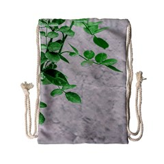 Plants Over Wall Drawstring Bag (small) by dflcprints