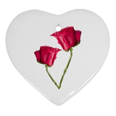 Red Roses Photo Ornament (heart) by dflcprints