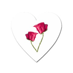 Red Roses Photo Heart Magnet by dflcprints