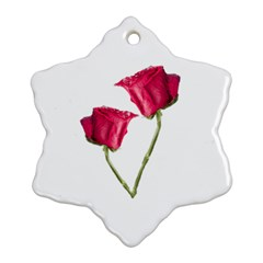 Red Roses Photo Ornament (snowflake) by dflcprints