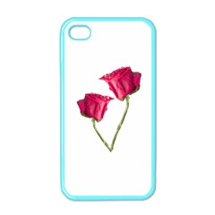 Red Roses Photo Apple Iphone 4 Case (color) by dflcprints