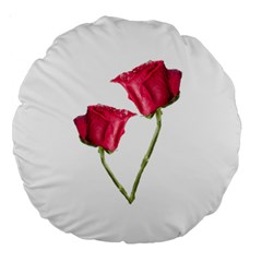Red Roses Photo Large 18  Premium Round Cushions by dflcprints