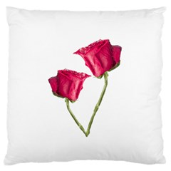 Red Roses Photo Standard Flano Cushion Case (one Side) by dflcprints
