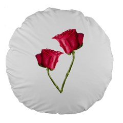 Red Roses Photo Large 18  Premium Flano Round Cushions by dflcprints