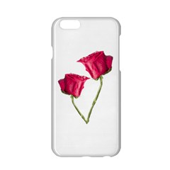 Red Roses Photo Apple Iphone 6/6s Hardshell Case by dflcprints