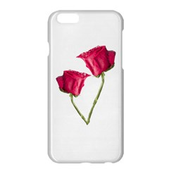 Red Roses Photo Apple Iphone 6 Plus/6s Plus Hardshell Case by dflcprints