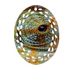 Macro Of The Eye Of A Chameleon Ornament (oval Filigree) by Simbadda