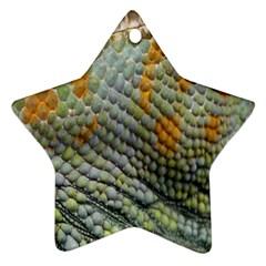 Macro Of Chameleon Skin Texture Background Ornament (star) by Simbadda