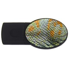 Macro Of Chameleon Skin Texture Background Usb Flash Drive Oval (2 Gb) by Simbadda