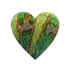 Colorful Chameleon Skin Texture Heart Magnet by Simbadda