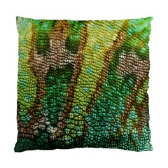 Colorful Chameleon Skin Texture Standard Cushion Case (one Side) by Simbadda