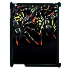 Colorful Spiders For Your Dark Halloween Projects Apple Ipad 2 Case (black) by Simbadda