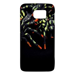 Colorful Spiders For Your Dark Halloween Projects Galaxy S6 by Simbadda
