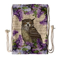 Vintage Owl And Lilac Drawstring Bag (large) by Valentinaart