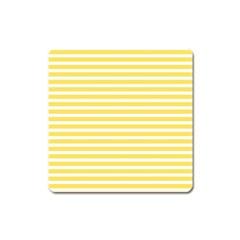 Horizontal Stripes Yellow Square Magnet