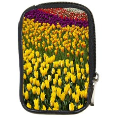 Colorful Tulips In Keukenhof Gardens Wallpaper Compact Camera Cases by Simbadda