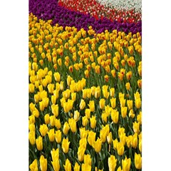 Colorful Tulips In Keukenhof Gardens Wallpaper 5 5  X 8 5  Notebooks by Simbadda