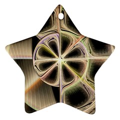 Background With Fractal Crazy Wheel Star Ornament (two Sides) by Simbadda