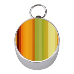 Colorful Citrus Colors Striped Background Wallpaper Mini Silver Compasses by Simbadda