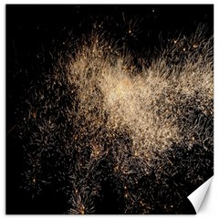 Fireworks Party July 4th Firework Canvas 12  X 12   by Simbadda