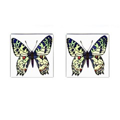 A Colorful Butterfly Image Cufflinks (square) by Simbadda