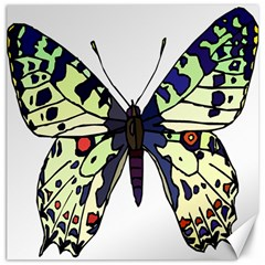 A Colorful Butterfly Image Canvas 12  X 12