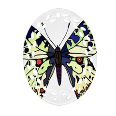 A Colorful Butterfly Image Ornament (oval Filigree) by Simbadda