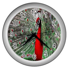 Red Peacock Wall Clocks (silver)  by Simbadda