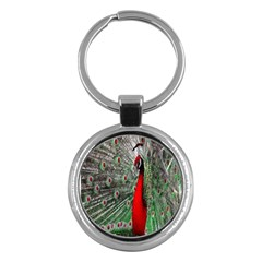 Red Peacock Key Chains (round)  by Simbadda