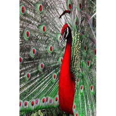 Red Peacock 5 5  X 8 5  Notebooks by Simbadda