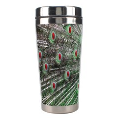 Red Peacock Stainless Steel Travel Tumblers by Simbadda
