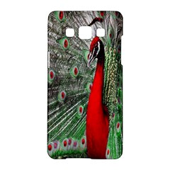 Red Peacock Samsung Galaxy A5 Hardshell Case