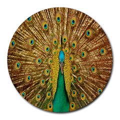 Peacock Bird Feathers Round Mousepads by Simbadda