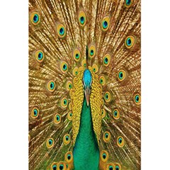 Peacock Bird Feathers 5 5  X 8 5  Notebooks by Simbadda