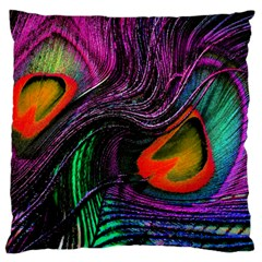 Peacock Feather Rainbow Large Flano Cushion Case (two Sides) by Simbadda