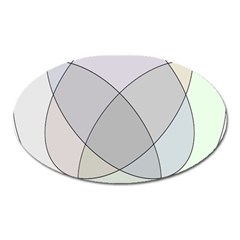 Four Way Venn Diagram Circle Oval Magnet by Mariart