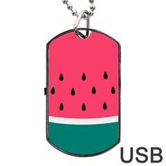 Watermelon Red Green White Black Fruit Dog Tag Usb Flash (two Sides) by Mariart