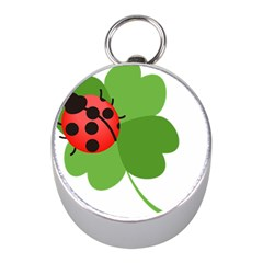 Insect Flower Floral Animals Green Red Mini Silver Compasses by Mariart